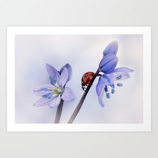 Ladybird on purple flower Art Print