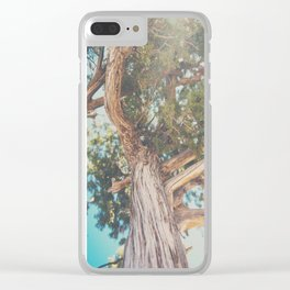 looking up through the leaves of the Juniper Tree ... Clear iPhone Case
