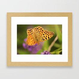 Flying Nature Framed Art Print