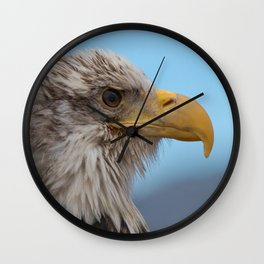 White Headed Eagle Portrait. Wall Clock
