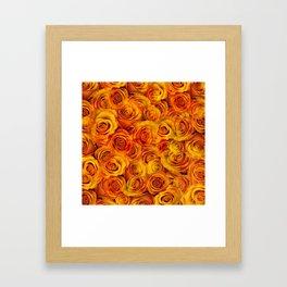Grenadier Tangerine Roses Framed Art Print
