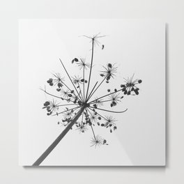 Simply lace Metal Print