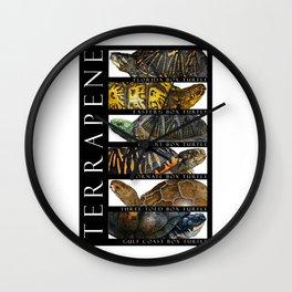 Box Turtles of North America Wall Clock