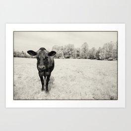 Turkey the Cow Art Print