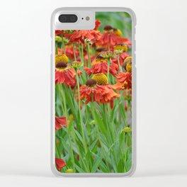 Lovely rudbeckia flower garden Clear iPhone Case