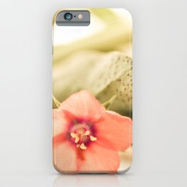 Beautiful origanum flower - Floral Photography #Society6 iPhone Case