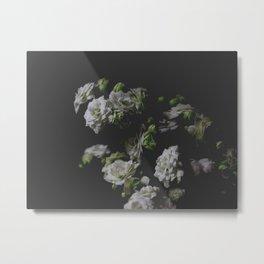 White Kalanchoe Metal Print