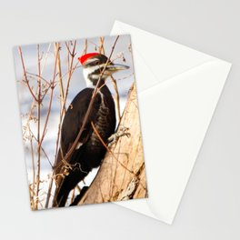 Peter Pecker Stationery Cards
