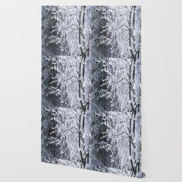 Snowy Tree Branches Winter Scene #decor #society6 #buyart Wallpaper