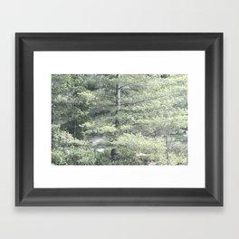 Trees on Trees Framed Art Print