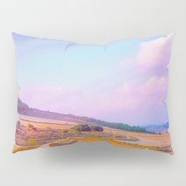 Beyond Possible Pillow Sham