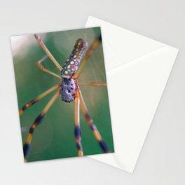 Orbweaver macro Stationery Cards