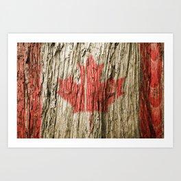 Canada on woods Art Print