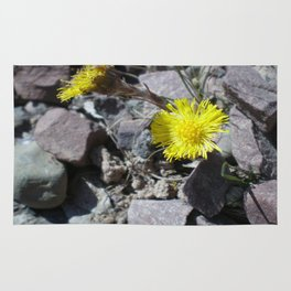 Coltsfoot Rug
