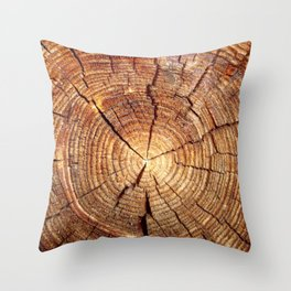 cracked wood Throw Pillow