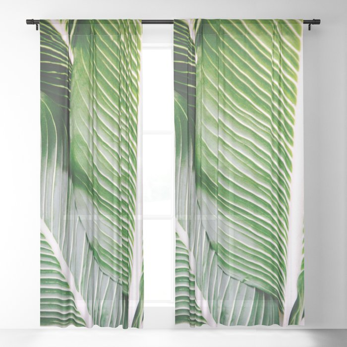 Big Leaves - Tropical Nature Photography Sheer Curtain
