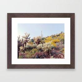 Arizona Color Framed Art Print