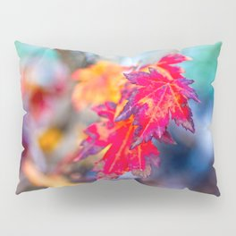 Colorful Japanese Maple Tree Leaves In Autumn Pillow Sham
