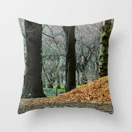 Central Park 80's Throw Pillow