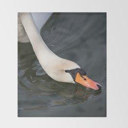 Mute Swan in Winter - Neck Skimming Throw Blanket