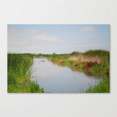 Ducks in the Creek Canvas Print