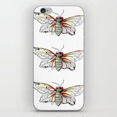 Cicada I iPhone & iPod Skin