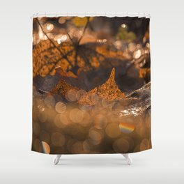 Autumn Bokeh Shower Curtain