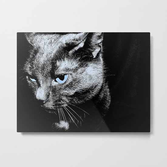 Black and White Cat with Blue Eyes Metal Print