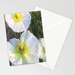 Zen White Flowers Stationery Cards
