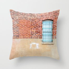 Pretty Prison Throw Pillow