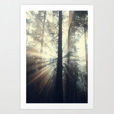 Lost In The Light Art Print