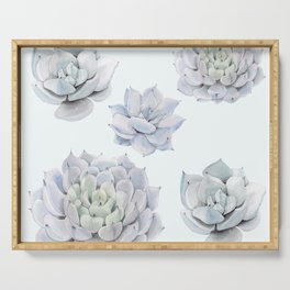 Blue Succulents Serving Tray