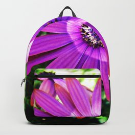 Purple African Daisy Backpack