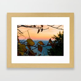 Turned Out to be Just Trees Framed Art Print