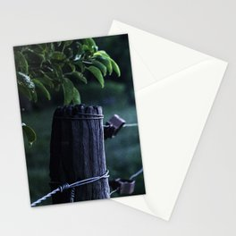 Domingo en el campo - Sunday at the countryside Stationery Cards