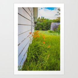 Farmhouse Lilies, North Dakota 4 Art Print