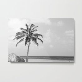 Aruba Metal Print
