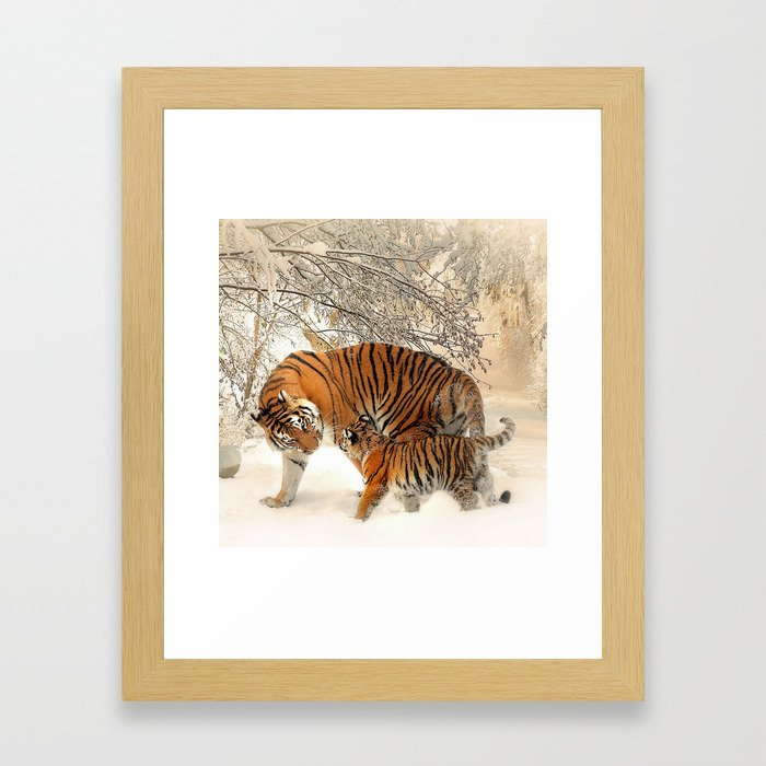 Tiger_2015_0126 Framed Art Print