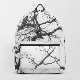 EXTENDED Backpack