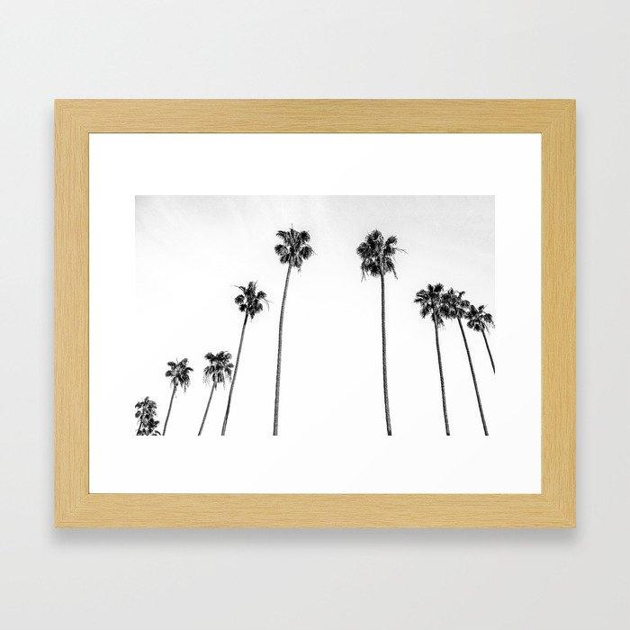 Black + White Palms Gerahmter Kunstdruck