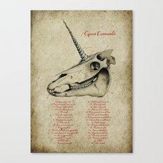 Equus Cornualis Canvas Print