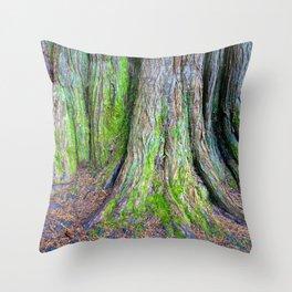 Rainbow Trees II Throw Pillow