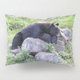 Contemplative Black Bear Pillow Sham