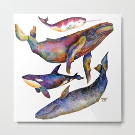 Whale All Over Print Metal Print