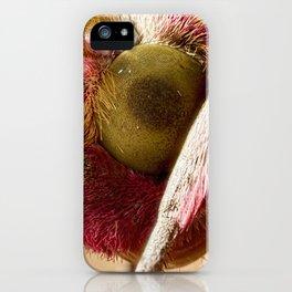Elephant Hawk Moth eye extreme macro iPhone Case