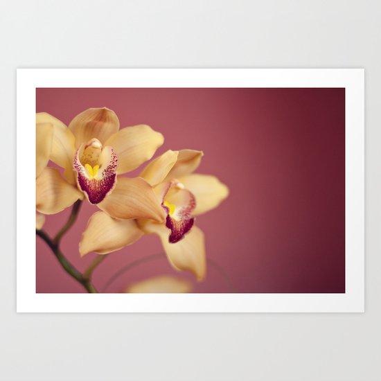 yellow orchids no. 1 Art Print