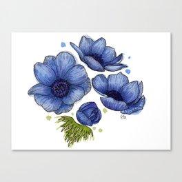 Blue Anemone Flowers - Watercolor Canvas Print