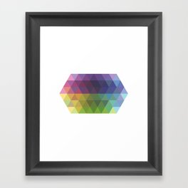 Fig. 016 Framed Art Print