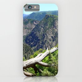 Black Canyon Of Gunnison View iPhone Case