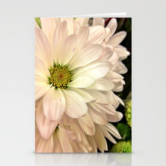 Daisy on Daisy Stationery Cards